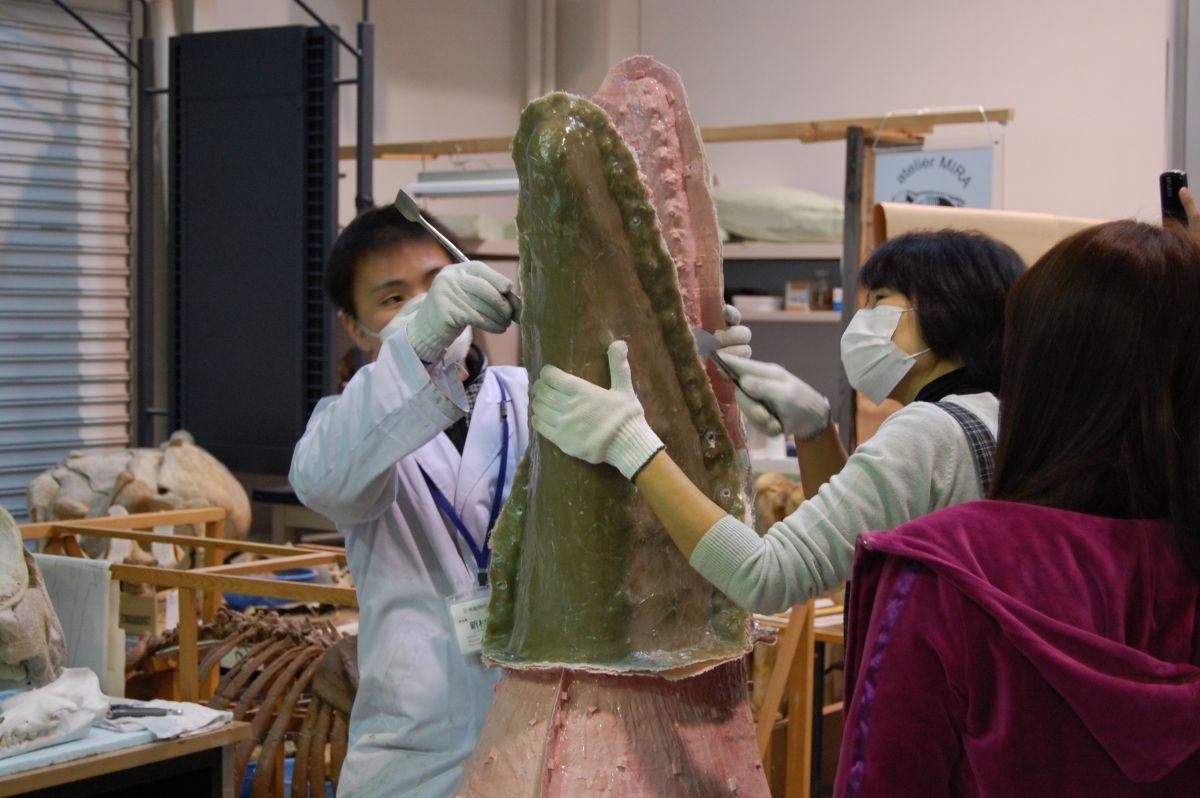 http://www.museum.ashoro.hokkaido.jp/html/column/20110111_02.jpg