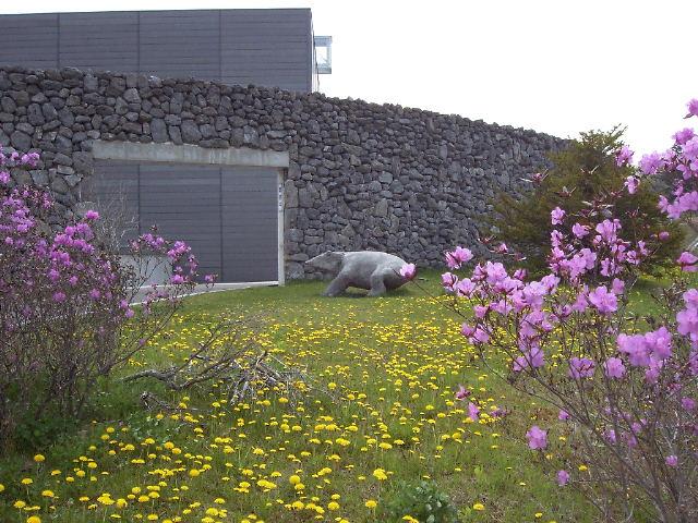 http://www.museum.ashoro.hokkaido.jp/html/column/20110522_01.jpg